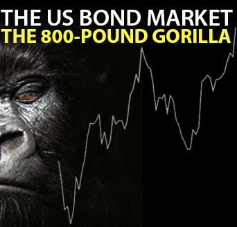 The US Bond Market – the 800-Pound Gorilla