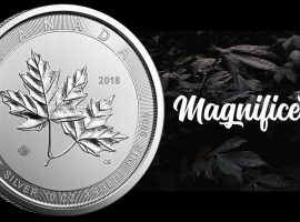 Maple Leaf Coin (Magnificent Silver Maple Leaf Coin)