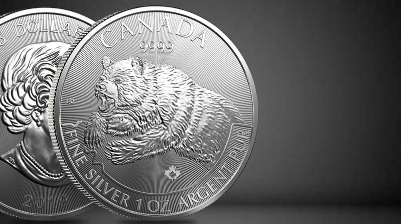 The Canadian Silver Grizzly Leaps Onto the Scene